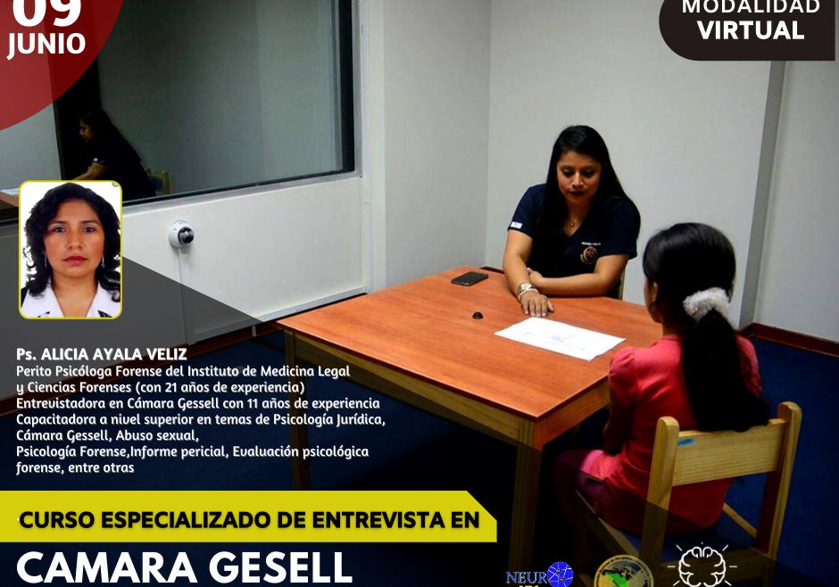 CURSO ESPECIALIZADO DE ENTREVISTA EN CAMARA GESELL EN CASOS DE VIOLENCIA
